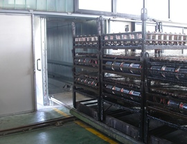 Static oven (T 200 ° C) with entry of the pieces through trolleys on ground rails